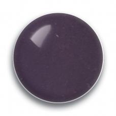 Purple Papoose